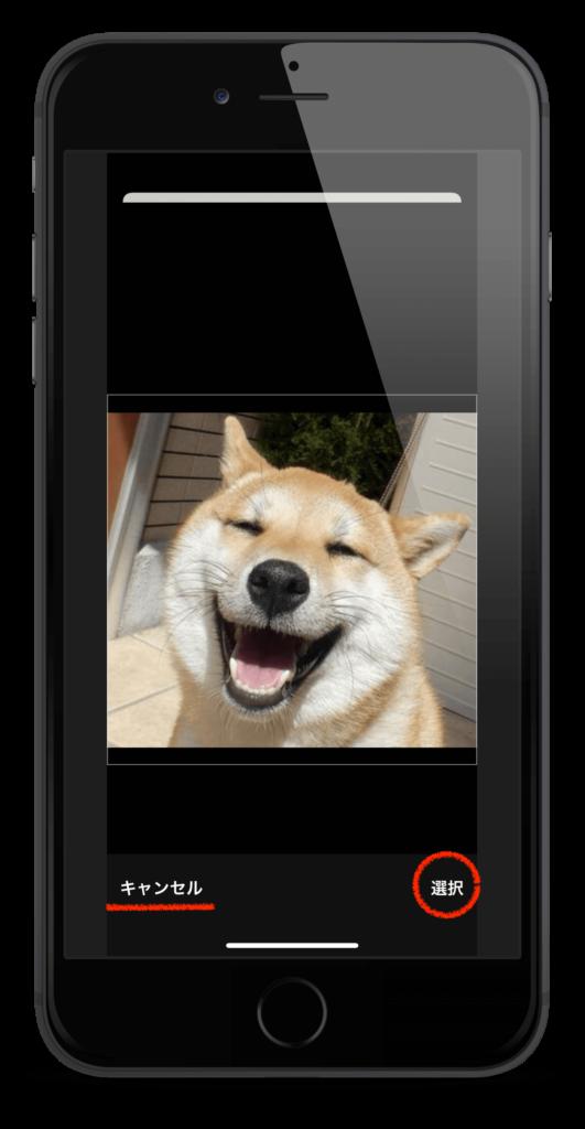 iPhoneのすべての画像から一枚を選んだ時に表示されるスクリーンショット