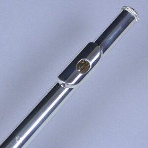 GXモデルのリングキィタイプ、頭部管をアップにした画像です