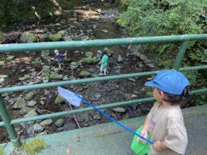 そぶらの森のレストランを抜けて行くと、緑の橋がかかっていて下は川になっているところを撮影しました。